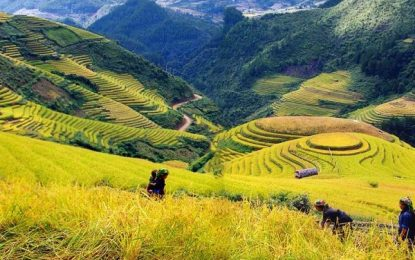 Top 10 địa danh du lịch hấp dẫn nhất tại Việt Nam