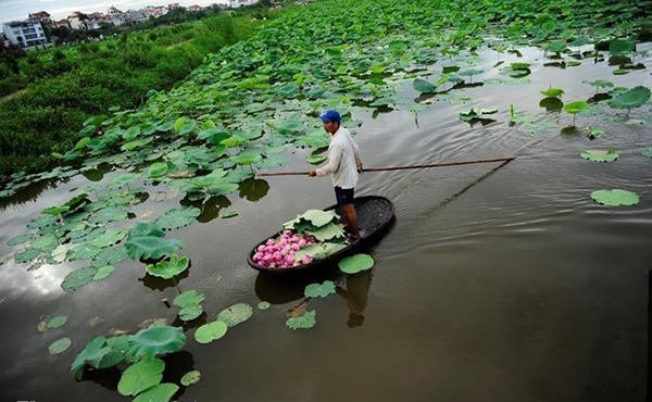 Thành phố du lịch Việt 2