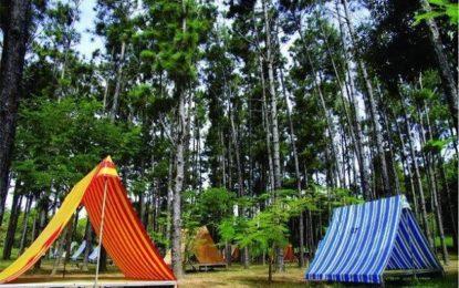 Trải nghiệm thiên nhiên tại khu du lịch sinh thái Du Sơn Vũng Tàu