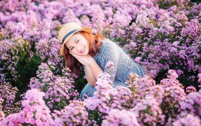 Đắm chìm sắc tím mộng mơ trong vườn hoa thạch thảo Vũng Tàu nhé